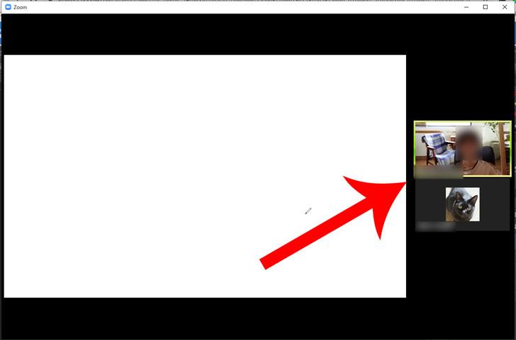 Zoom 画面 分割