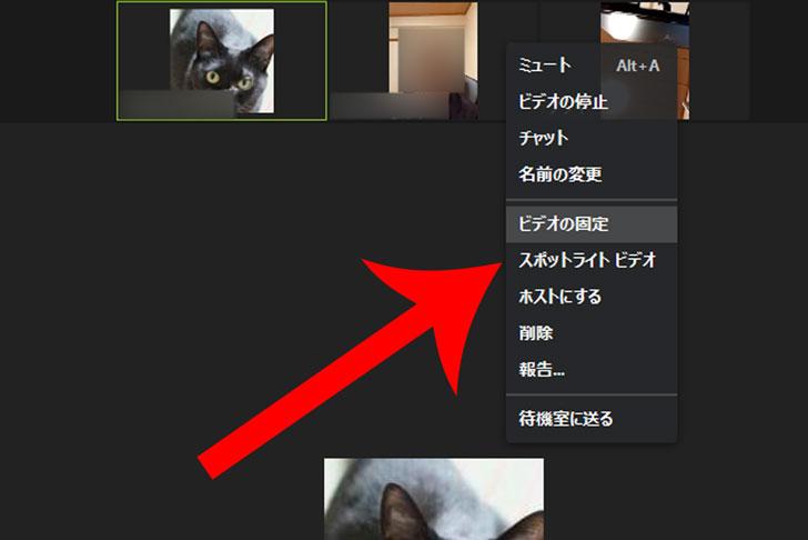 ライト ビデオ スポット zoom